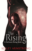 The Rising Trade Paperback & eBook United Kingdom cover